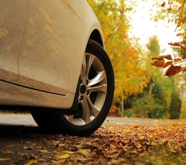 Fall Car Care Tips for Your Toyota